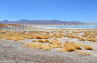 Lagune, Bolivie