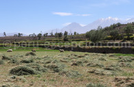 Sommets d'Arequipa