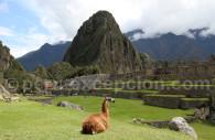 Grande place, cité du Machu Picchu