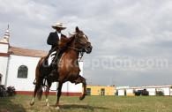 Concours national de Caballos de Paso, Trujillo