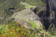 Description de la Cité du Machu Picchu