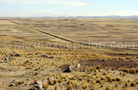Camellones entre Titicaca et Sillustani