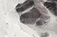 L'homme Chouette de Nazca