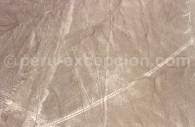 Le Chien de Nazca