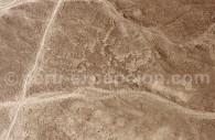 Divinités Anthropomorphes de Nazca