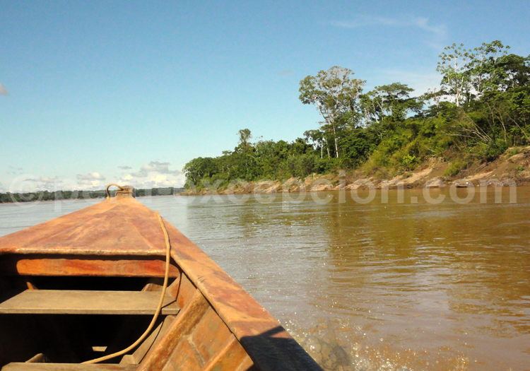 fleuve amazone pérou