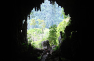 Cueva de las lechuzas du parc Tingo Maria