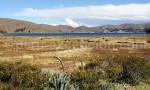 Parcs et réserves naturelles région Cuzco Puno