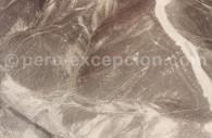 Divinités Nazca