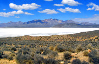 Laguna de Salinas, Aguada blanca