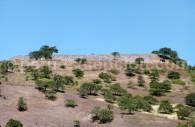 Site de Kuntur Huasi