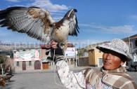 Condor des Andes, Chiclayo