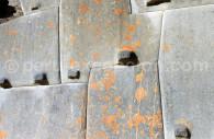 Vestiges recouverts de lichens