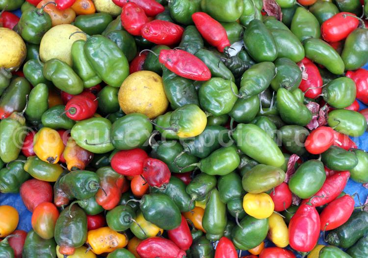 Variété de piments