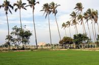 Site de Túcume