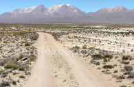 Formations de Puruña, Arequipa