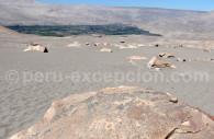 Site de Toro Muerto
