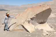 Pétroglyphe, Toro Muerto
