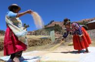 Pénincule Chicuito, Lac Titicaca
