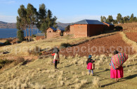 Llachon au bord du Titicaca