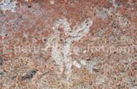 Site naturel de Toro Muerto