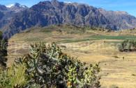Voyage privé au Pérou