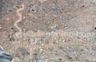 Pétroglyphes de Toro Muerto