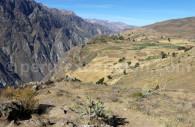 Valle de Colca, Perú