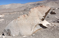 Toro Muerto, Valle de Majes, Perú