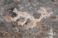 Culture Précolombienne, Toro Muerto