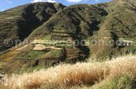 Terrasses de Huayllafara